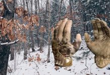 Best Gloves for Hunting